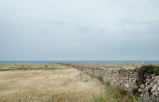 Mur de pierre typique de l'île de minorque, avec un pré.