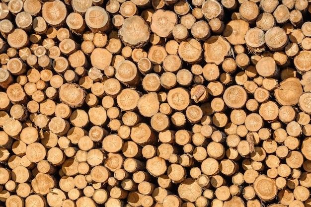 Mur de rondins de bois empilés en arrière-plan