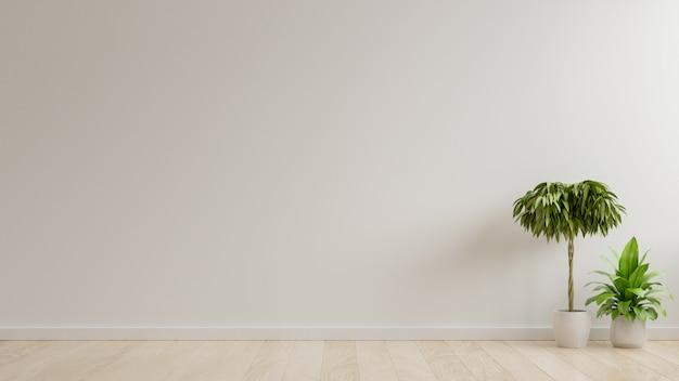 Mur vide salle blanche avec des plantes sur un sol.