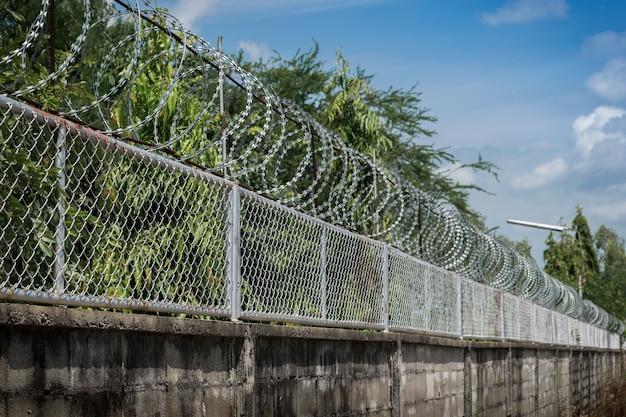Murs avec fil de fer barbelé sur fond d'arbre ciel et nature