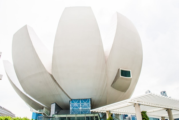 Musée artscience à marina bay sands