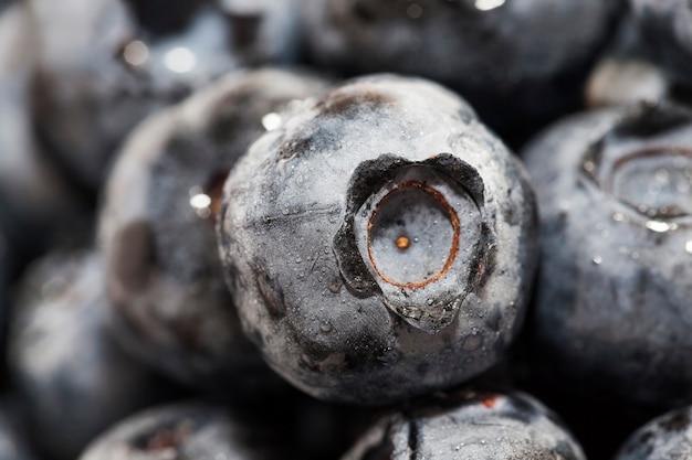 Myrtilles mûres fraîches avec des vitamines récoltées myrtilles fraîches et savoureuses myrtilles