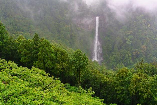 Nachi tombe sous la pluie et de beaux paysages brumeux en arrière-plan , classé au patrimoine mondial de l'unesco dans la préfecture de wakayama , japon