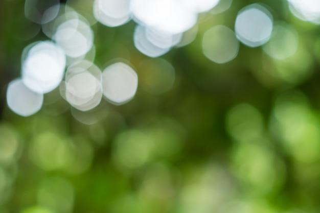 Nature de bokeh lumière abstraite de feuille verte