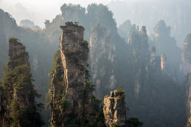 Nature en chine - paysage de montagne de zhangjiajie wulingyuan
