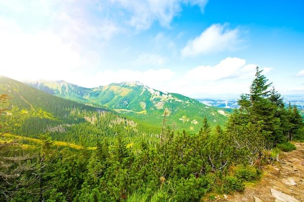 La nature dans les montagnes.
