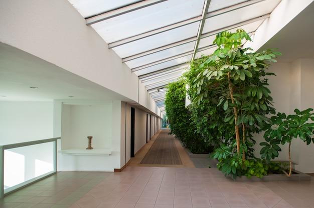 Nature à l'intérieur du bâtiment, couloir et feuillage