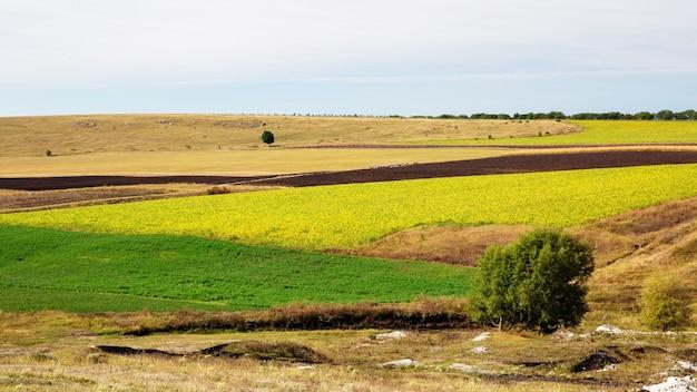 Nature de la moldavie, champs semés avec diverses cultures agricoles