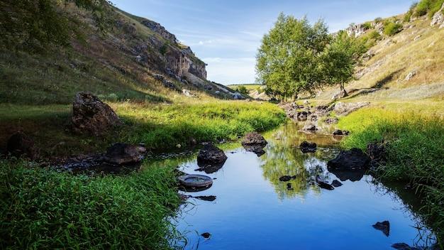 Nature de la moldavie, vallée avec rivière qui coule, hautes herbes et arbres le long d'elle