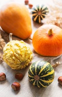 Une nature morte d'automne rustique avec des citrouilles sur fond textile