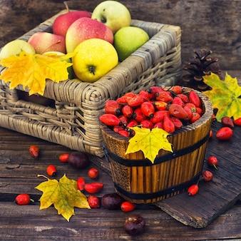 Nature morte aux pommes d'automne