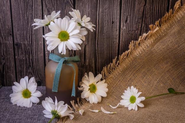Nature morte: chrysanthèmes blancs dans un vase et autour