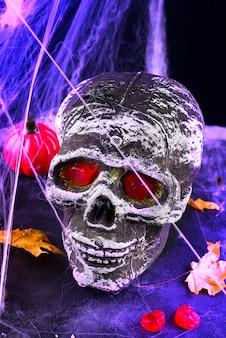Nature morte avec crâne humain et feuilles d'automne, araignée sur halogène violet noir