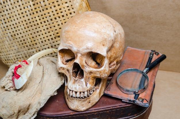 Nature morte avec crâne humain et lanterne