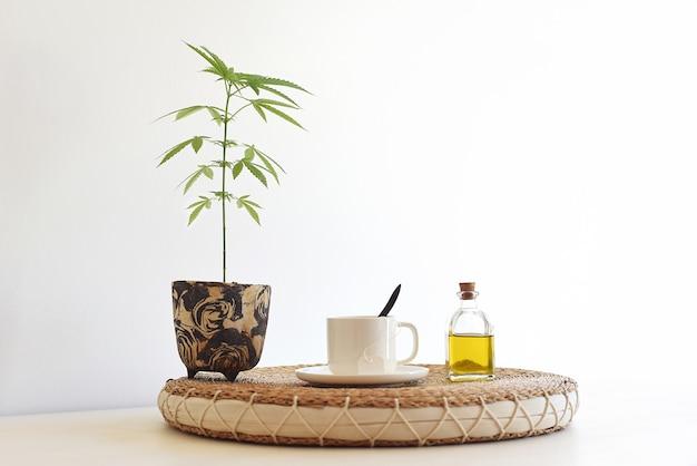 Nature morte d'huile de cbd avec plante naturelle, tasse infusée et bouteille d'huile de chanvre.