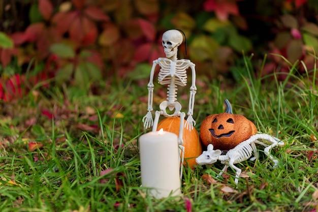 .nature morte de squelettes et de citrouilles contre le feuillage d'automne dans le jardin pour les vacances d'halloween