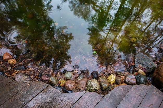 Nature naturelle. réflexion d'arrière-plan des arbres dans un lac.