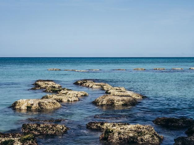 Nature paysage fond tropical vacances voyage design