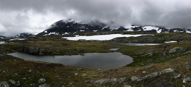 Nature rugueuse dans le paysage norvégien en été