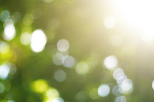 Nature verte lumière du soleil coloré bokeh abstrait style de ton de couleur pastel vintage