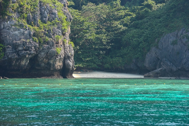 Naturelle célèbre île de phi phi jour de vacances ensoleillées.