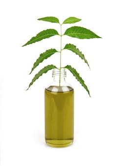 Neem ou azadirachta indica feuilles vertes et huile isolé sur fond blanc.