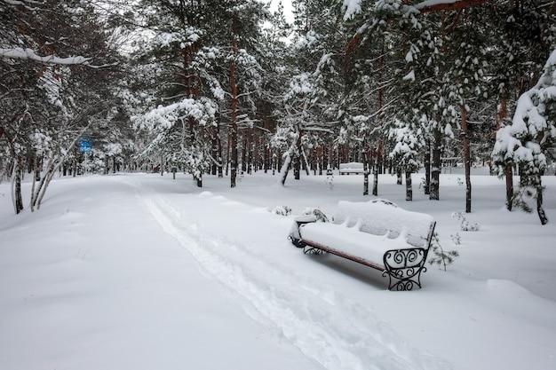Neige sur banc dans le parc à l'heure d'hiver.