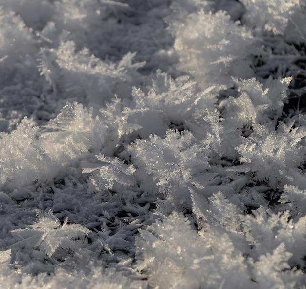 Neige blanche sur champ d'herbe verte