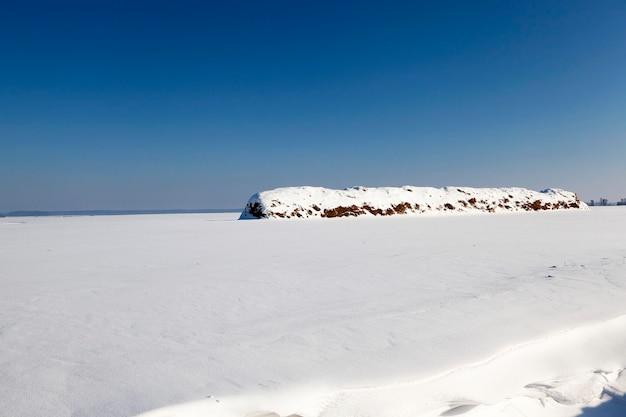 Neige blanche gisant sur le sol en hiver