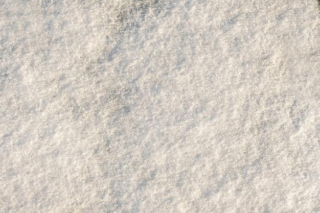 Neige couchée sur la glace.