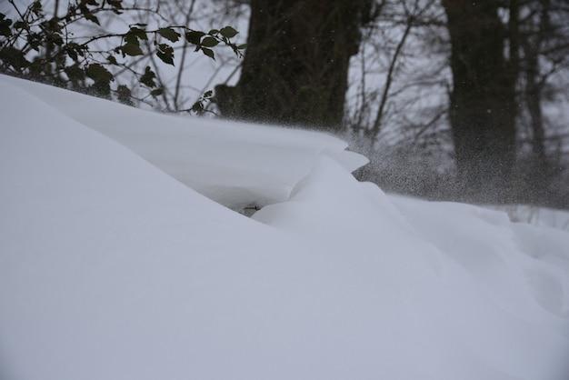 Neige pendant une tempête se bouchent