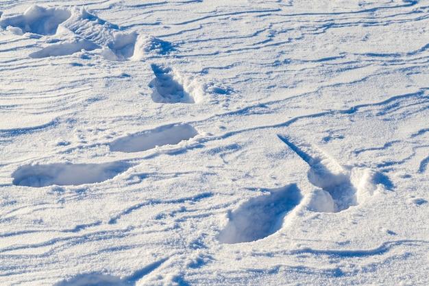 La neige profonde dérive avec des traces de personnes du passé, gros plan