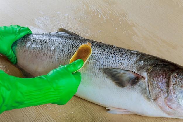 Nettoyage des balances d'idé avec un couteau spécial dentelé