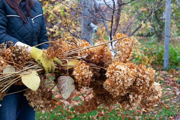 Le nettoyage du jardin en automne l'homme aux gants jaunes jette des branches de noyer qui ont été ramassées dans son...