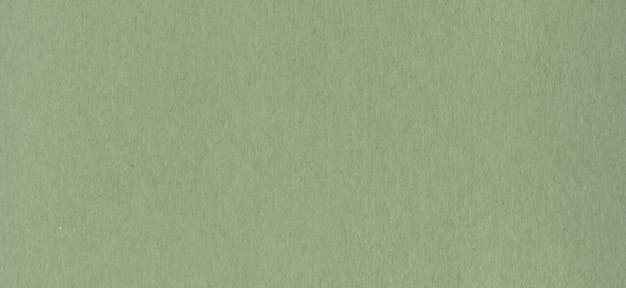 Nettoyer la texture d'arrière-plan du papier carton kraft vert.