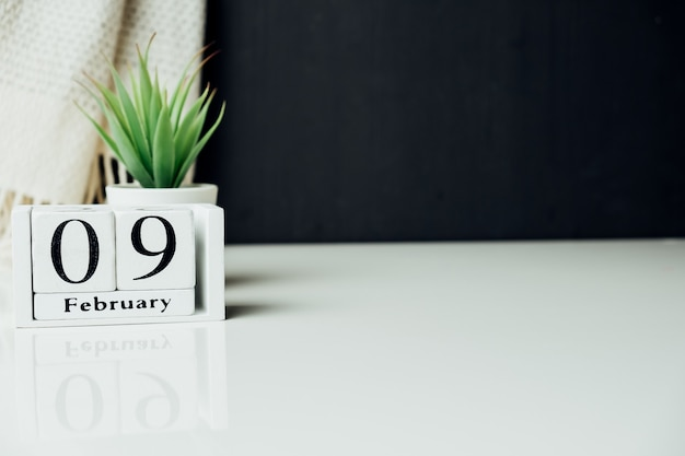 Neuvième jour du calendrier du mois d'hiver février avec espace de copie.