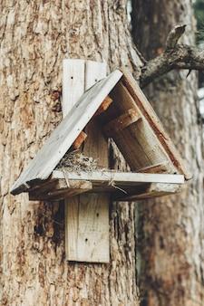 Nichoir sur un arbre