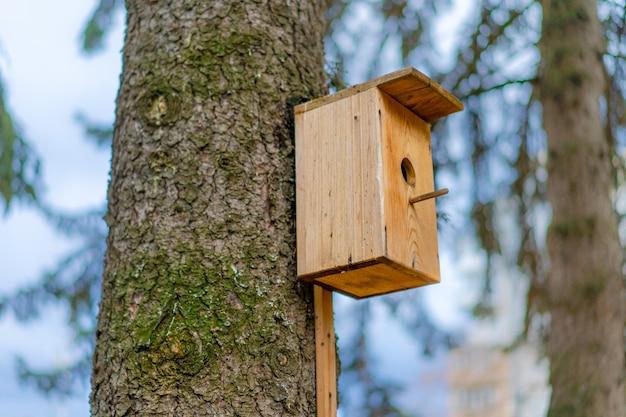 Nichoir pour oiseaux monté sur un arbre