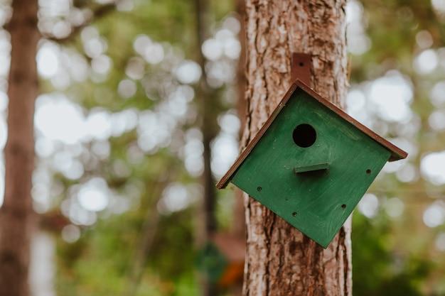 Le nichoir vert en bois est sur l'arbre