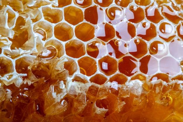 Nid d'abeille frais naturel