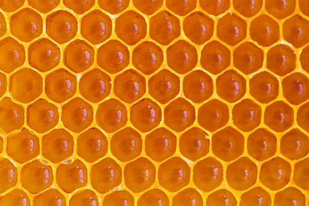 Nid d'abeille jaune de cire se bouchent.