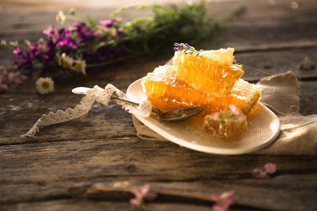 Nid d'abeille et louche à miel en bois.