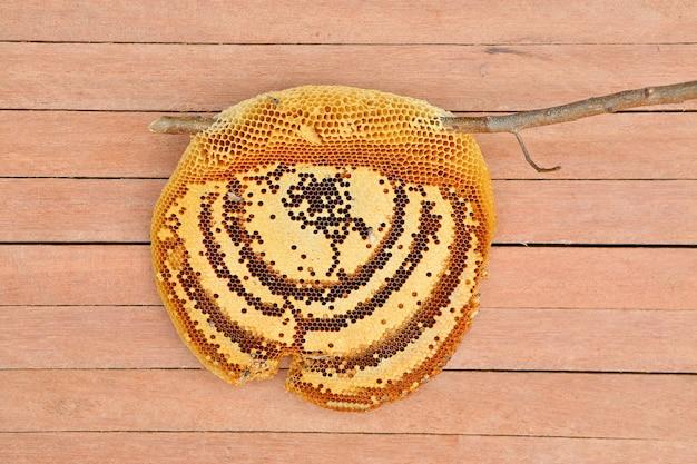 Nid d'abeille se bouchent sur la planche de bois, vue de dessus
