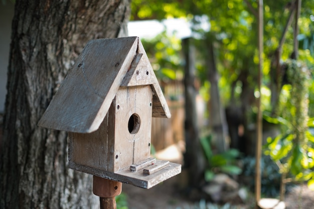 Nid d'oiseau, maison pour animal