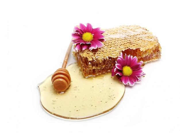 Nids d'abeilles frais