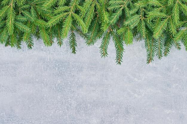 Noël. branches de sapin de noël