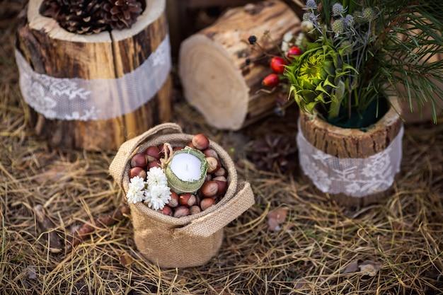 Noisettes dans un seau près de souches en bois. idée de décorations pour mariage rustique.