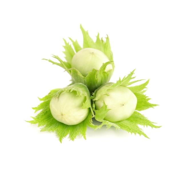 Noisettes vertes isolées sur fond blanc. noisettes vertes fraîches.
