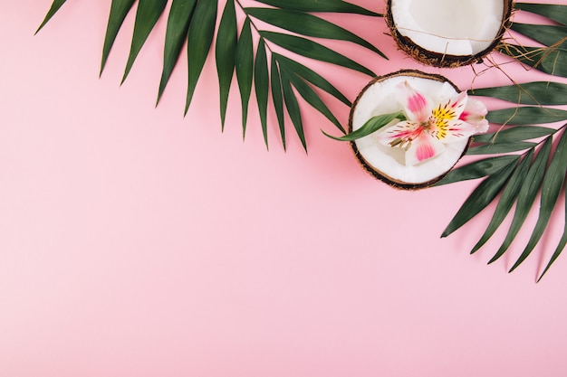 Noix de coco avec astroemeria de fleur autour des feuilles de palmier sur fond rose