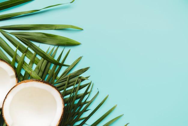 Noix de coco cassées et feuilles en coin